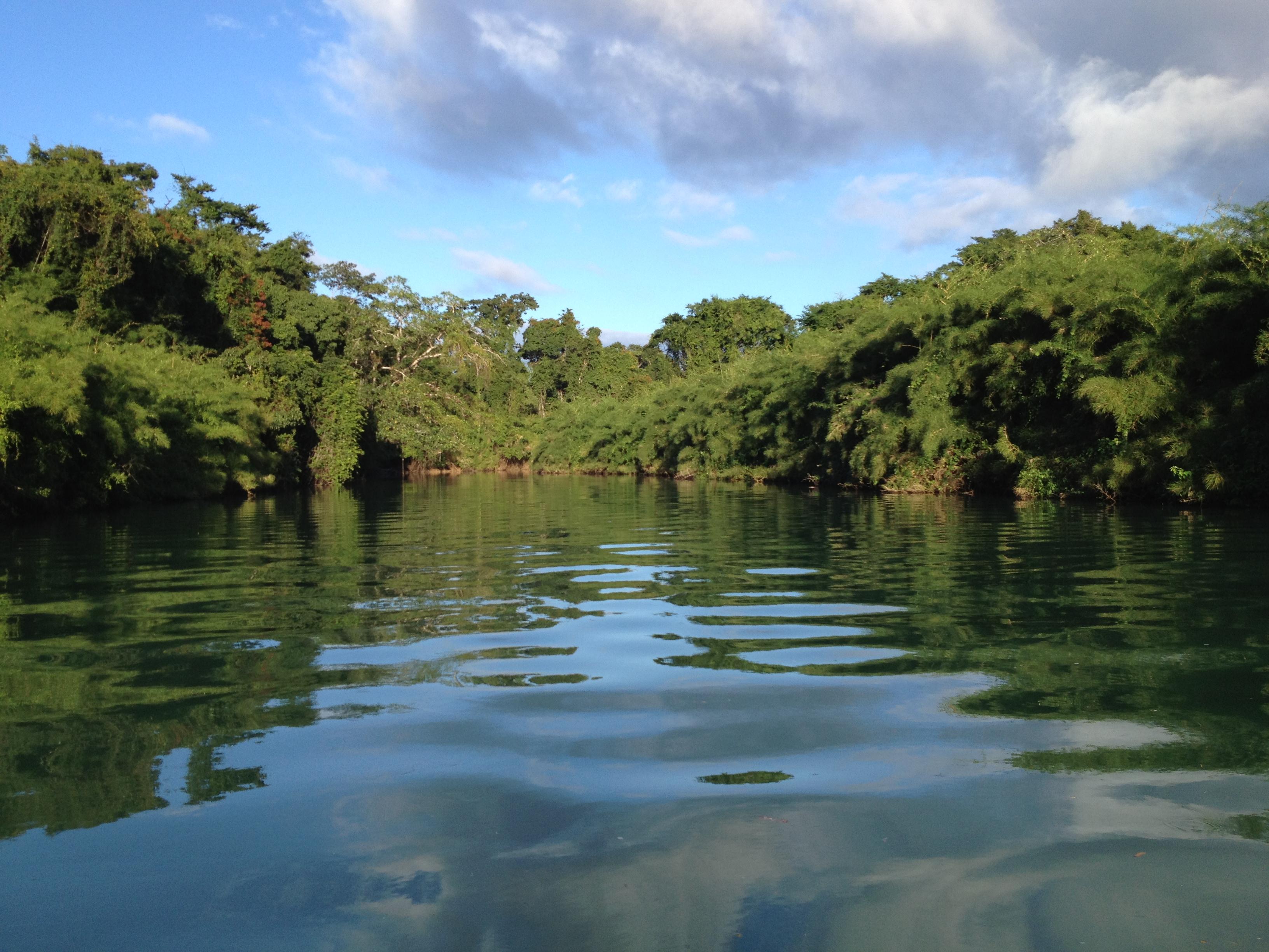 Parte de la Reserva de la Biosfera Montes Azules