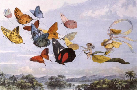 Richard Doyle, The Fairy Queen Takes an Airy Drive (1870)